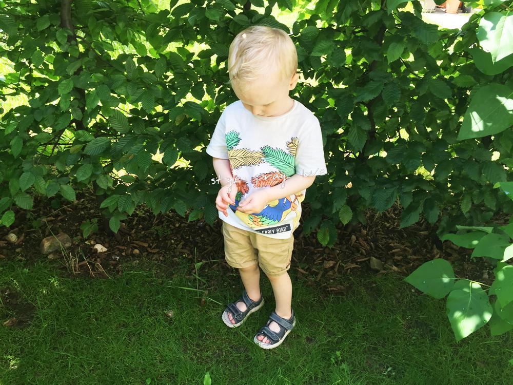 kindermode-jungen-sommer-2016-3-spl