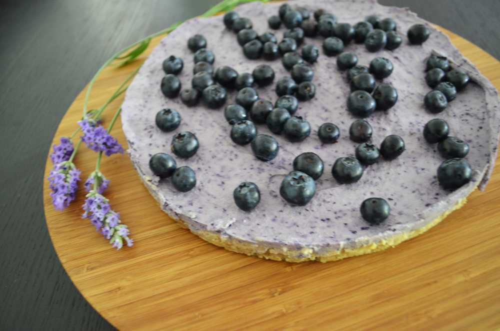 no-bake-cake-blaubeer-nusskuchen-2-spl