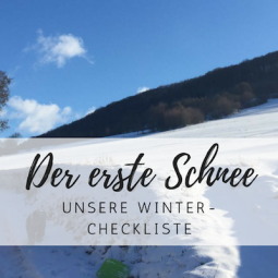 Arthur im Schnee & unsere Winter-Checkliste